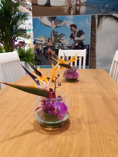 Centros de flor con ave del paraíso y orquídeas