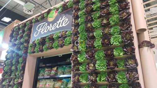 Jardín vertical Florette