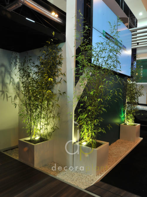 Maceta blanca con bambú